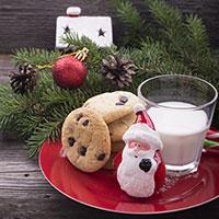 Santa, milk and cookies